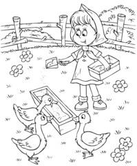 Girl feeds ducks