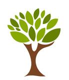 Fototapety Symbolic tree