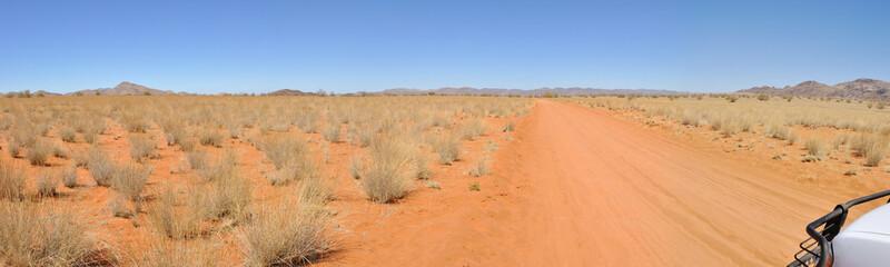 Panoramique piste désert