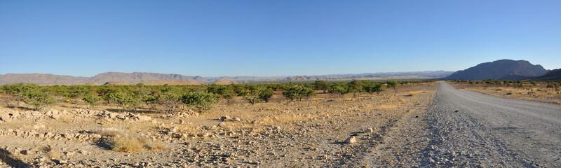 Namibie panoramique