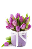 Pink tulips - 23970669