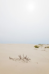 Rolling sand dune