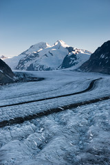 Aletsch glacier with Moench in the background