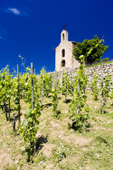 vineyard and Chapel of St. Christopher, Hermitage, France