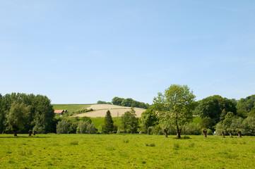 Landscape in Dutch Limburg