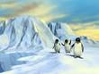Arctic landscape - 23994828