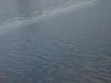 river, blue waves vibration, wind environmental concept