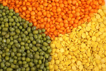 "Yellow split, red ""football"" lentils and green mung beans"