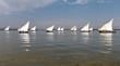 Barcos de vela latina, en España