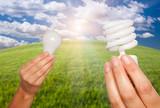 Female Hands Holding Energy Saving and Regular Light Bulbs poster