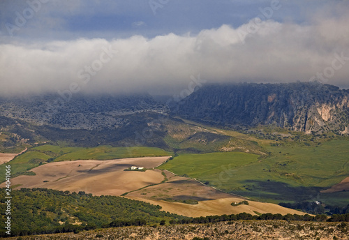 """Valley farmland, Ronda, Andalucia, Spain"""