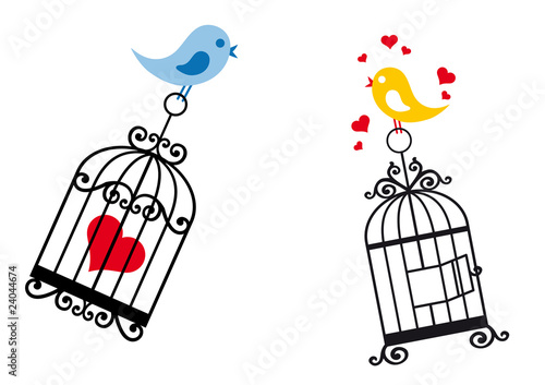 Foto op Aluminium Vogels in kooien birds in love with birdcage