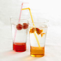 goldfish cocktails
