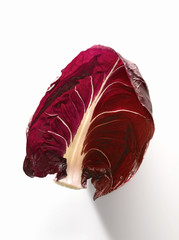 red chicory of trévise leaf