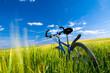 Bike on the field
