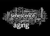 Aging Concepts poster