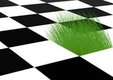 Growing grass on a chess-board