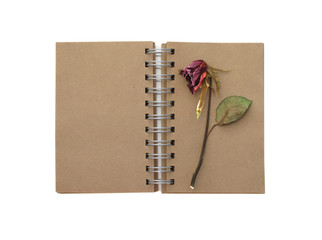 notebook and red rose isolated on white