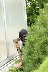 Burglar hidden in the garden