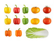 SET of vegetables isolated on white Clipping Path.