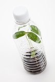 plastic bottle and Sprout