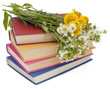 Wild flowers and old books