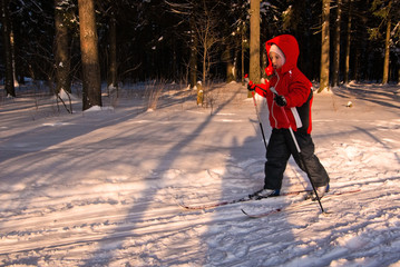 Little Girl Cross Country Skiing