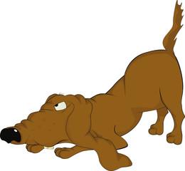 Very malicious dog