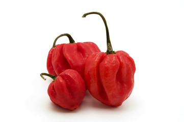 Sweet pimento peppers