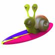 3d Snail surfs