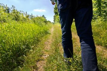 Wandern  auf dem Feldweg