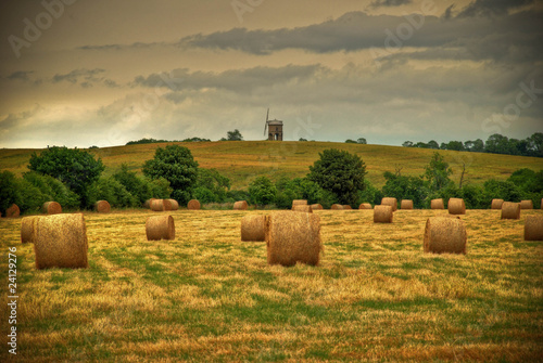 Field with hay bales and windmill in background