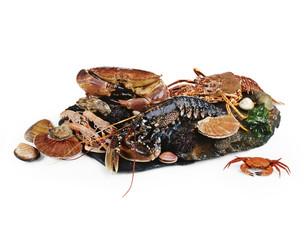 assorted seafood and shellfish