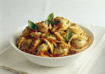 tortellonis with mascarpone,tomato and basil sauce