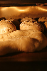 bread loaves in the oven