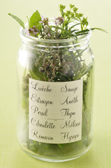 jar of fresh herbs
