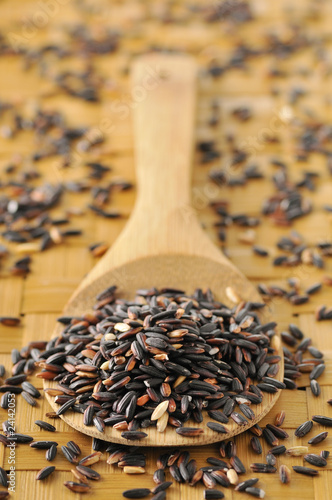 spoonful of wild rice