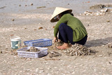 Vietnamese fisherman on the beach
