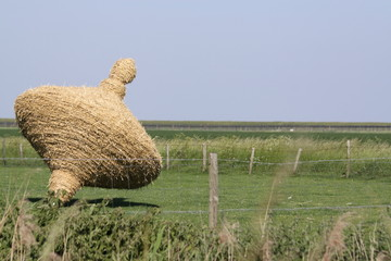 Summer in the Dutch province of Zeeland in Holland