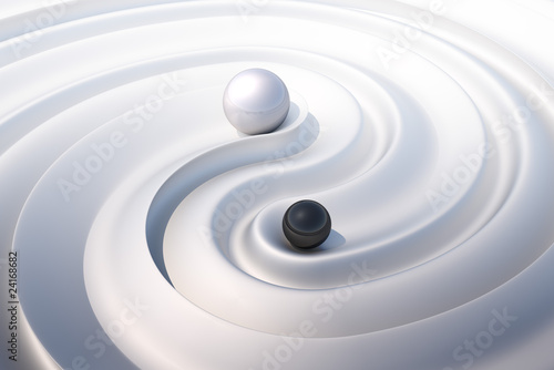 canvas print picture YinYang#1