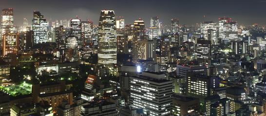 Tokyo at night panorama with illuminated skyscrapers