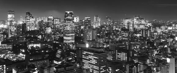 Tokyo at night panorama, b&w