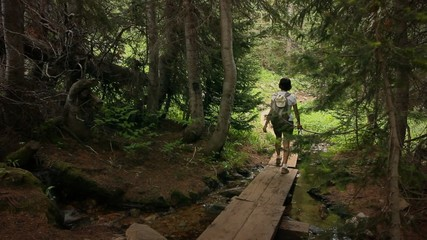 (1218b) Mountains Forest Trail Woman Hiker Stream Summer