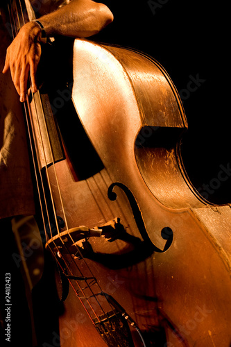 Hand of the musician on the contrabass at the live concert