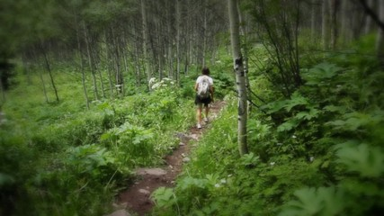 (1224) Woman Hiking Mountain Aspen Grove Summer Wildflowers
