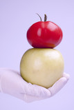 Modify DNA in fruits to make better grow poster
