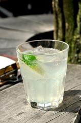 Gin tonic im Glas mit Limone, lecker erfrischend