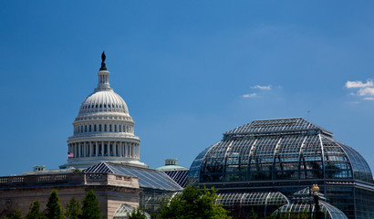 Capitol Building framed by Botanic Gardens