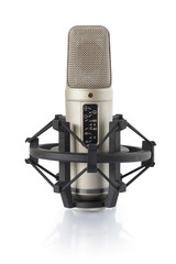 Condenser microphone in holder