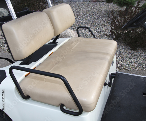 Golf Cart Interior
